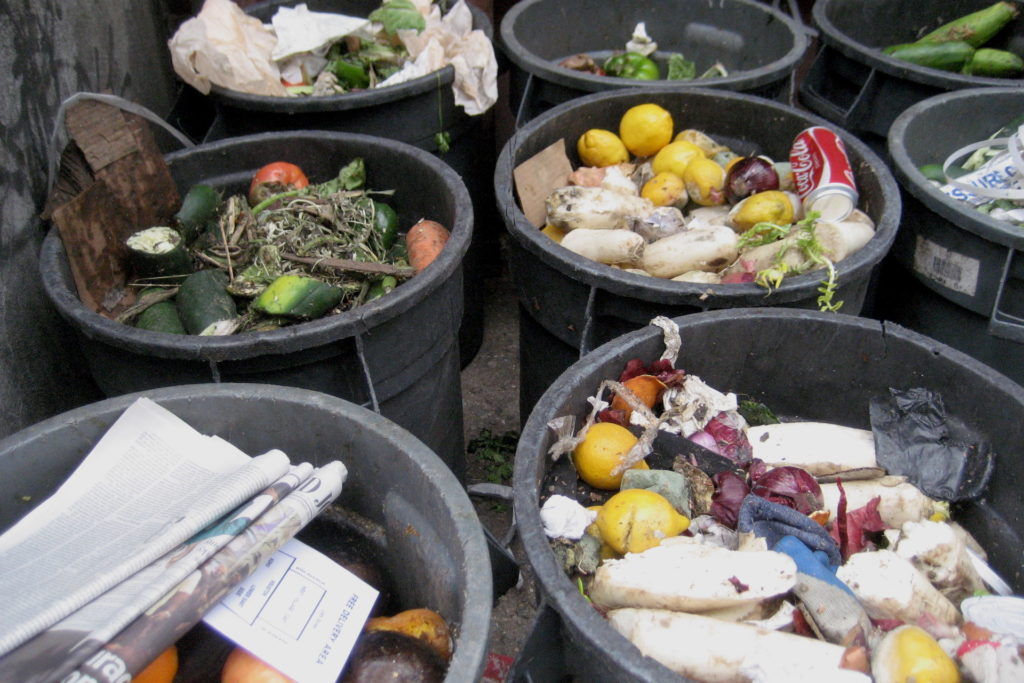 How to recycle anything and everything in Edinburgh food bins