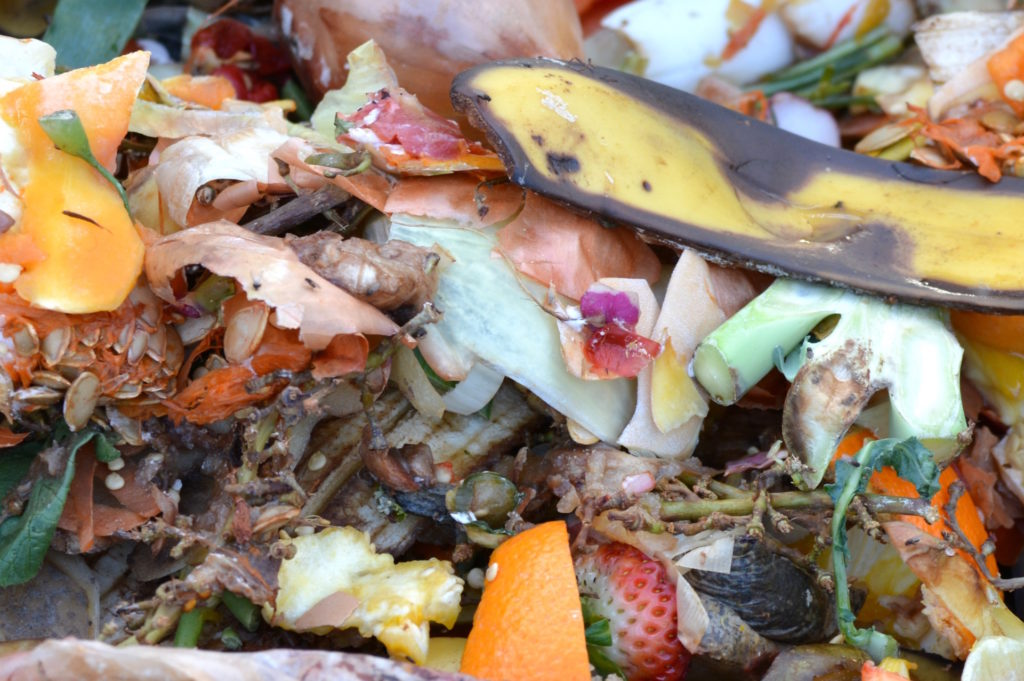 How to recycle anything and everything in Edinburgh food waste