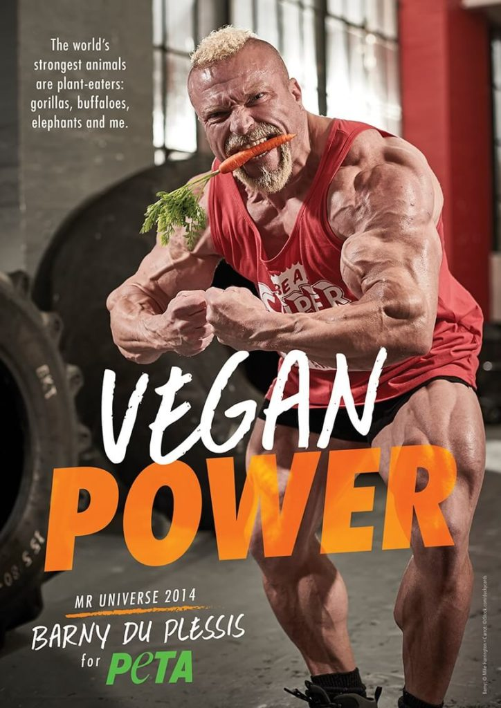 Plant-based nutrition for athletes: Vegan Barny du Plessis